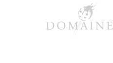 logo ricardelle BOTTOM plus BIO